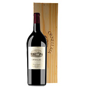 ornellaia magnum toscano igt rosso red wine bolgheri superiore 2005 Tuscany